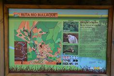 Tabla de la Yedra ( Ruta Río Bullaque) Piedra Buena. (Ciudad Real)