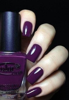 color number three!!! <3 purple has to be in my wedding somewhere!!!!