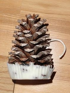 pine cone fire starters...diy - This is the only one I could fine. but when we did it we dipped the entire pinecone into the wax and set them into paper cupcake liners. and positioned the wick.    I like the dip and drip better no pouting and the cones burn very slow