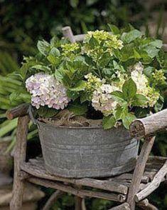 I just love the simplicity of this combination.. #gardeninspo #hydrangea #oldzinkbath #pottingideas #gardenlove #jennyroseinnes