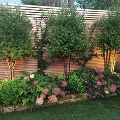 Backyard landscaping is totally vital if you possess your dwelling. Pool landscaping isn't quite the exact same as standard yard landscaping. Privacy Landscaping, Small Backyard Landscaping, Landscaping Tips, Backyard Ideas, Backyard Privacy, Pool Ideas, Acreage Landscaping, Inexpensive Landscaping, Backyard Designs