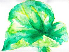 Rhubarb Leaf nature watercolor painting. Quick painting on a plant painting/drawing course in Suomenlinna, Finland.