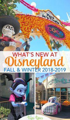 Printable Map Of California Adventure Disney Disneyland Map