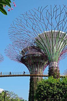 [Singapur mit Kindern] Unsere Tipps: von Übernachtung über Essen bis Sightseeing - Planet Hibbel Marina Bay Sands, Das Hotel, Dom, Fair Grounds, Children, Travel, Interactive Display, Walking Paths, Light Installation