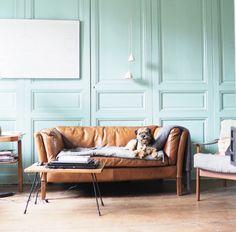 salon, bleu vert,mur vert, canapé en cuir, chien, salon vintage