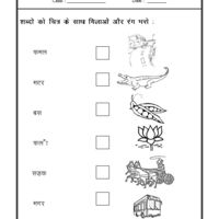 Hindi Hindi Worksheet - Match the picture