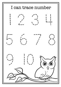 FREE I can trace number worksheet Preschool Owl Preschool, Preschool Number Worksheets, Nursery Worksheets, Alphabet Tracing Worksheets, Numbers Preschool, Preschool Learning Activities, Preschool Printables, Kindergarten Worksheets, Activity Sheets For Kids