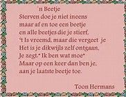 Afbeeldingsresultaten voor teksten toon hermans Grief, Wisdom, Words, Quotes, Bing Images, Google, Quotations, Sadness, Quote