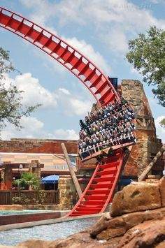 Shekra at bush gardens Tampa -honestly my favorite ride ~Bethanee Owens Best Amusement Parks, Amusement Park Rides, Water Park Rides, Water Parks, Best Roller Coasters, Busch Gardens Tampa Bay, Places To Travel, Places To Visit, Bush Garden