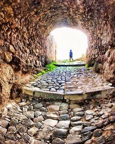 """""""Duvarlara ve sınırlara teslim olmak tabiata aykırıdır"""" -Füruğ Ferruhzad- #özgürlük #freedom #tabiat #aykırı #sınırtanıma #edebiyat #oku"""