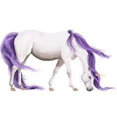 I Found Someone, Unicorn Shetland Dark bay Tobiano #65210 - Howrse US