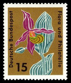 Art-Stamp-Art-German-Flower-Orchid-Flora-und-Philatelie1.jpg 720×840 pixels