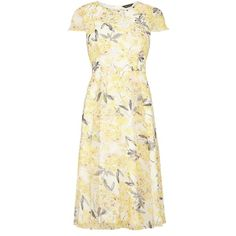 Dorothy Perkins Floral Printed Fit and Flare Dress (180 BRL) ❤ liked on Polyvore featuring dresses, clearance, yellow, flower print dress, midi dress, beige midi dress, dorothy perkins and floral print dress