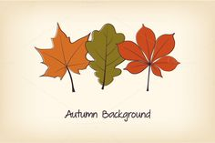 Check out Autumn Leaves Cards by Paper Cards on Creative Market