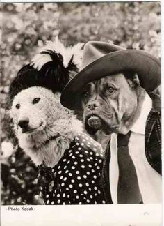 Mr & Mrs Dogger.