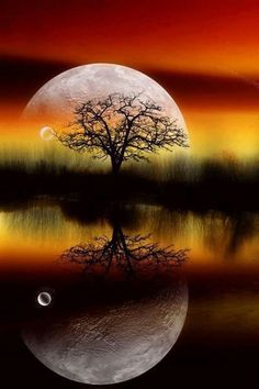 everyday a different color, beautiful gifs, soft goth, nature. images that I like and attract my attention. I hope you'll find images here for your taste too. Moon Pictures, Pretty Pictures, Moon Pics, Beautiful Moon, Beautiful World, Amazing Photography, Nature Photography, Shoot The Moon, Belle Photo