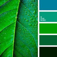 Цветовая палитра №3849