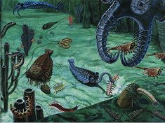 Paleobiology 3