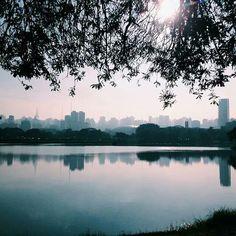 Parque do Ibirapuera, São Paulo.