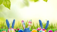 meadow, flowers, rabbit, grass, sunshine, easter, bunny, rabbit, easter, eggs, spring