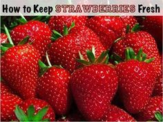 To keep strawberries fresh longer in refrigerator, use 1 Part White or apple cider vinegar to 10 Parts Water. Soak the berries, leaves & all in the vinegar/water mixture for a few minutes. Drain berries in a colander until completely dry.   Place berries in an uncovered bowl in refrigerator. The vinegar/water mixture kills any mold spores on the strawberries & keeps them fresh longer. The vinegar does not affect the taste. This works for all kinds of berries.