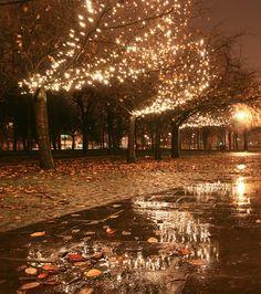 Fall, my favourite season...