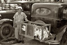 Selling chickens at a farmers' market (Russell Lee, Weatherford, TX). 1939