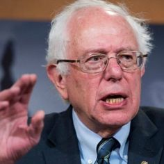"""Bernie Thoughts on Twitter: """"GROWING UP MY FIRST AND THIRD CAT LOVED ASPARAGUS WHICH MADE ME SUSPECT MY THIRD CAT WAS MY FIRST CAT SENT BACK TO TRY AGAIN"""""""