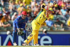 ICC World Cup recap: 5 highest innings scores
