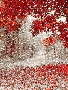 АНИМАЦИОННАЯ КАРТИНКА. Первый снег ... Seasons Months, December Holidays, Beautiful Gif, Winter Scenery, Winter Pictures, Winter Landscape, Winter Beauty, Happy Sunday, Autumn Summer