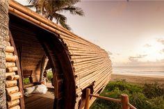 Playa Viva Sustainable Resort in Mexico