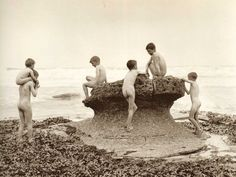 ''Sea Urchins'' Whitby - North Yorkshire - England - Late 1800s