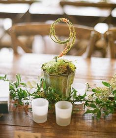 Take your woodland or rustic wedding to the next level with these Incredible Living Table Numbers, which double as stunning centerpieces for your reception tables.