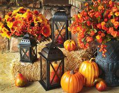 Décoration de tournesols d'automne pour entrée
