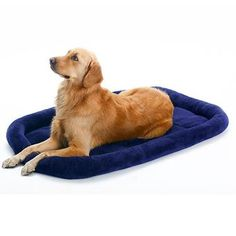 Pet Supplies Bed Big Size Pets Cushion Warm Sleeping for Golden Retriever Large Dog Cage Mat Blue(M)-Intl | Lazada Singapore