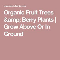 Organic Fruit Trees & Berry Plants | Grow Above Or In Ground