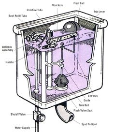 Everyone should know how to fix a toilet. It's (usually) pretty easy!