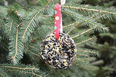 Homemade Birdseed Ornaments