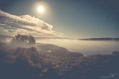 ANERIOJÄRVEN LUONNONSUOJELUALUE Aneriojärvi on peltojen ympäröimä kaunis järvi Kiskonjoen vesistön yläosassa. Järvi on runsasravinteinen kaislajärvi ja rantoja reunustavassa ilmaversoiskasvillisuudessa on järvikorte vallitsevin.  http://www.naejakoe.fi/luontojaulkoilu/aneriojarven-luonnonsuojelualue/ #Salo #VisitSalo #VisitFinland #Nähtävyydet #Sightseeing #Matkailu #Retkeily #Seikkailu #Adventure #VisitSalo #Loma #Pyöräily #Ulkoilu #natureaddict
