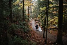 Couple walks through the forest in Franconia Notch State Park in New Hampshire after their elopement ceremony. New Hampshire elopement packages. White Mountains, Snowy Mountains, Franconia Notch, Echo Lake, Misty Forest, Outdoor Weddings, Beautiful Morning, Elopements, Best Day Ever