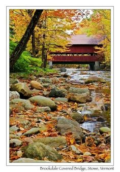 Vermont Landscape - Covered bridges and maple syrup! Le Vermont, Old Bridges, New England States, Covered Bridges, Places To See, Beautiful Places, Scenery, Around The Worlds, Landscape Photos