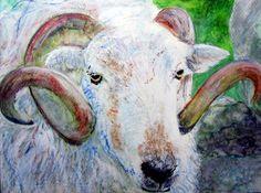 ♥ Original Painting Watercolour Ink Herdwick Sheep RARE Breed Morena Artina | eBay