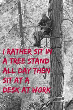 I rather sit in a tree stand all day