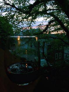 Wine in vines.   Bit by Bon   Red Wine. Back Porch. Evening. Boston. South Boston.