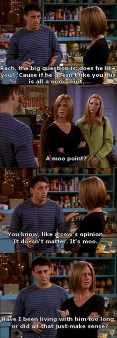 funny friends, a moo point