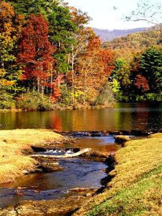 An autumn river rolls through a scenic colorful landscape full of trees Beautiful World, Beautiful Places, Beautiful Pictures, Tinta Natural, Ville New York, Fall Pictures, Perfect World, Belle Photo, Beautiful Landscapes