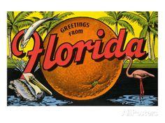 """""""Greetings From Florida"""" .Old Florida Postcard . Old Florida, Vintage Florida, Florida Travel, Florida Style, Stuart Florida, Florida Design, Beach Travel, South Florida, Vintage Travel Posters"""