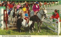 Butlin's Skegness. The horse riding stables