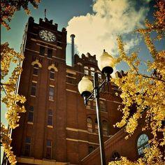 20 St. Louis Instagram Photos We Love | Midwest Living