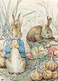 Resultado de imagen para dibujos de conejos